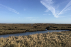 TPC-Salt-Marsh-towards-Mersea