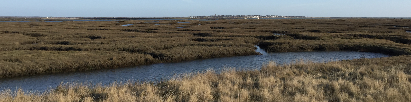 Tollesbury Parish Council, Crime Prevention, View Of Marsh Over To Mersea Island